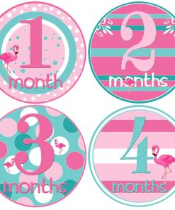 infant month stickers