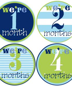 Twin Baby Month Stickers