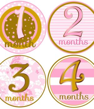 Baby Girl Month Stickers
