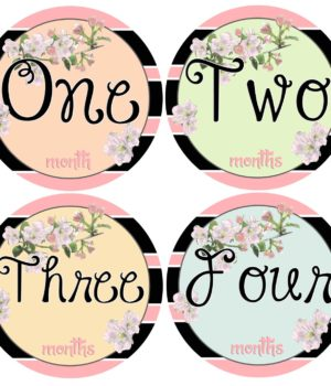 Girl Monthly Age Stickers
