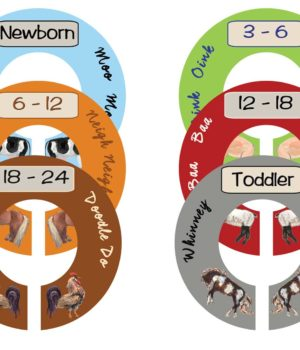 Nursery Closet Dividers for Baby Boy