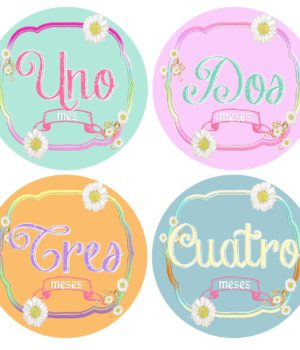 First Year Girl Month Stickers Spanish