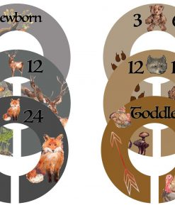 Woodland Critters Boy Closet Dividers