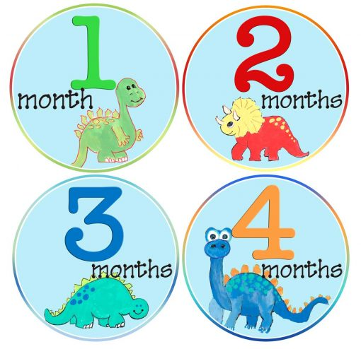 Baby Boy Dinosaurs Month Stickers