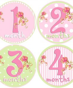 First Year Girl Month Stickers